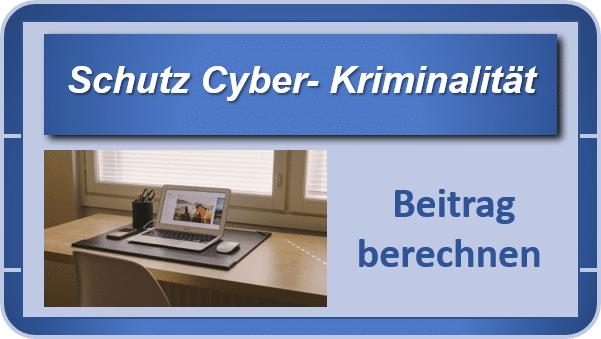 Cyber- Kriminalität